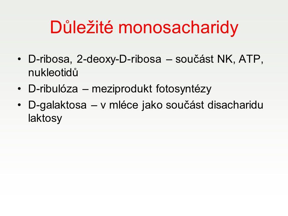 Důležité monosacharidy D-ribosa, 2-deoxy-D-ribosa – součást NK, ATP, nukleotidů D-ribulóza – meziprodukt fotosyntézy D-galaktosa – v mléce jako součás