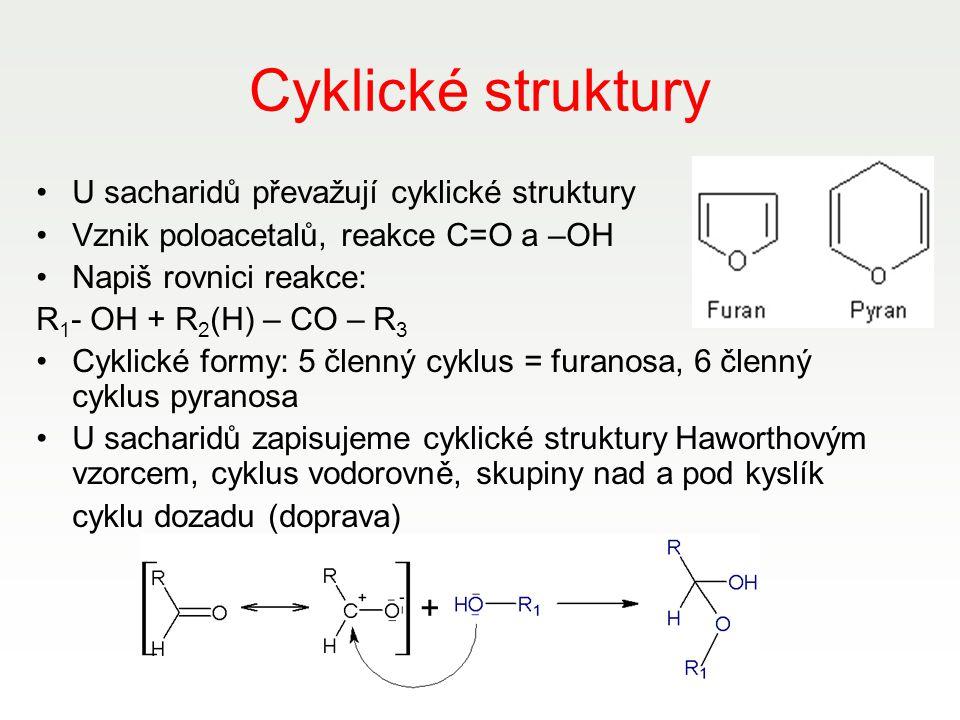 Cyklické struktury U sacharidů převažují cyklické struktury Vznik poloacetalů, reakce C=O a –OH Napiš rovnici reakce: R 1 - OH + R 2 (H) – CO – R 3 Cy