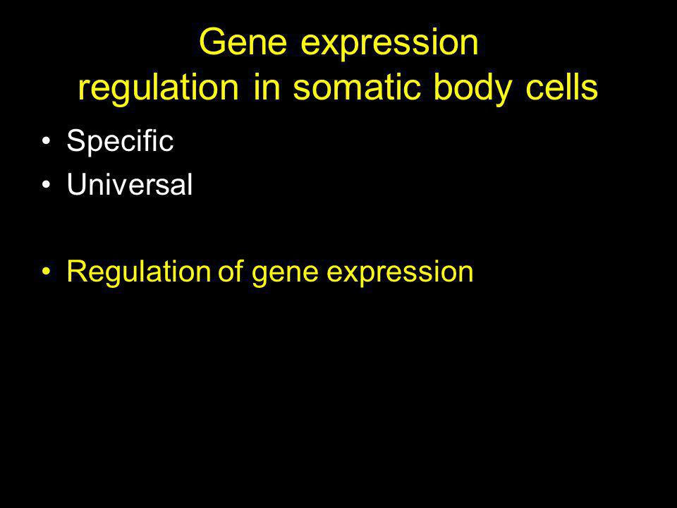 Gene expression regulation in somatic body cells Specific Universal Regulation of gene expression