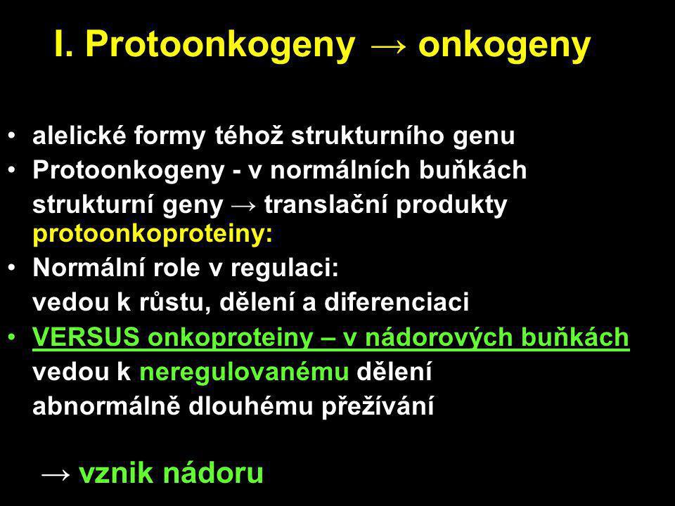 I. Protoonkogeny → onkogeny alelické formy téhož strukturního genu Protoonkogeny - v normálních buňkách strukturní geny → translační produkty protoonk