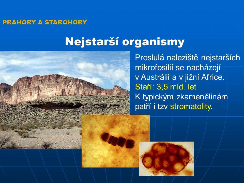 STROMATOLITY Útvary vzniklé fotosyntézou sinic Zajímavost: Původně byly považované za vyhynulé formy života, ale v roce 1933 byly nalezeny živé u břehů Austrálie PRAHORY A STAROHORY