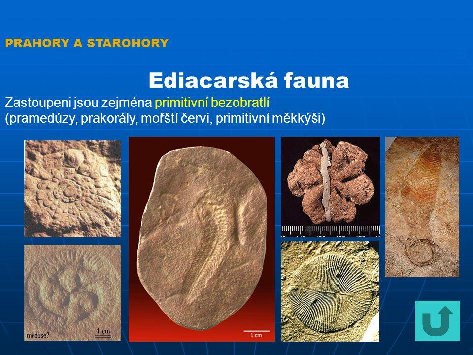 PRAHORY A STAROHORY Nejstarší horniny na Zemi Horniny z období vzniku zemské kůry se bohužel nedochovaly.
