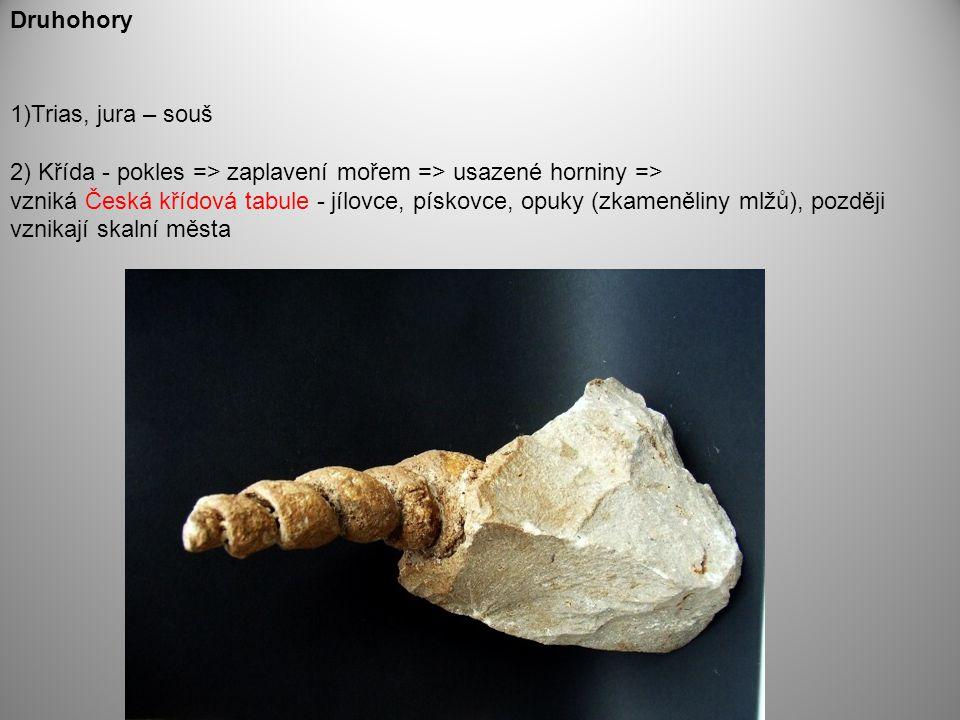 1)Trias, jura – souš 2) Křída - pokles => zaplavení mořem => usazené horniny => vzniká Česká křídová tabule - jílovce, pískovce, opuky (zkameněliny ml