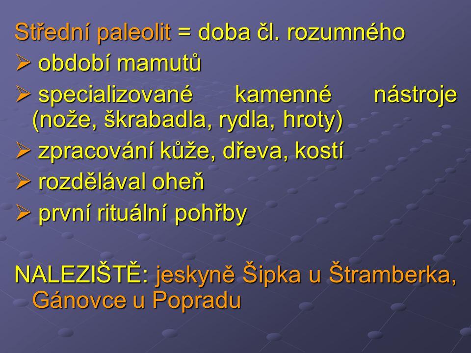 Střední paleolit = doba čl.