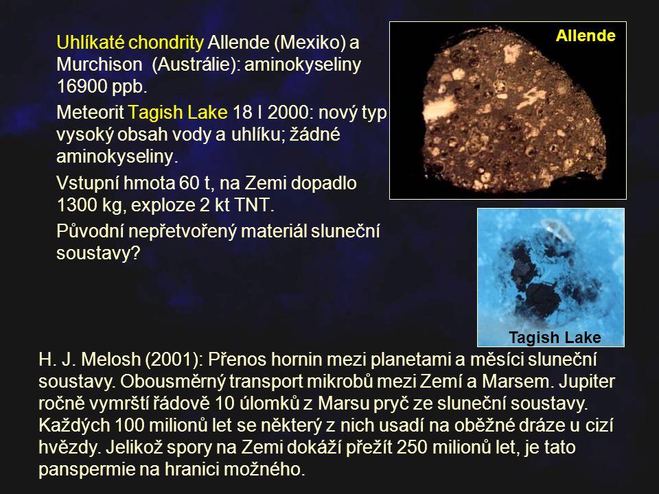 Uhlíkaté chondrity Allende (Mexiko) a Murchison (Austrálie): aminokyseliny 16900 ppb. Meteorit Tagish Lake 18 I 2000: nový typ - vysoký obsah vody a u