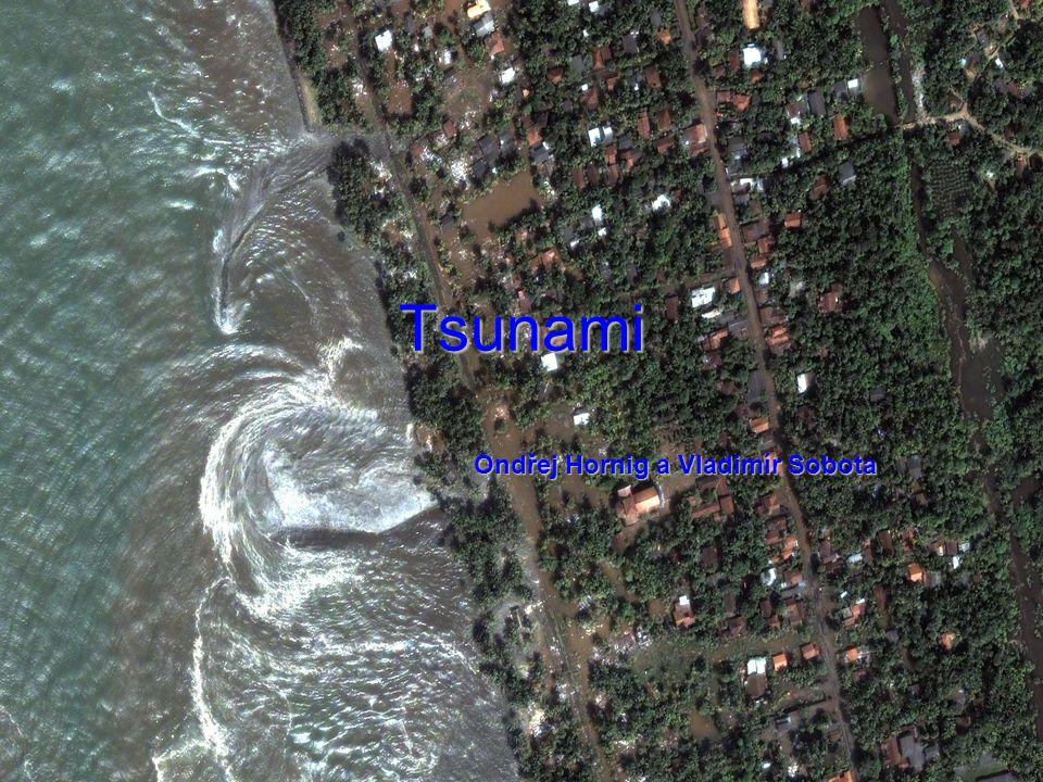 Tsunami Ondřej Hornig a Vladimír Sobota