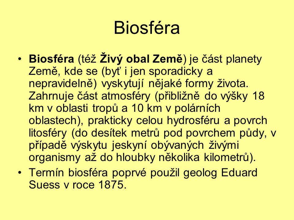 Chemická evoluce 1.