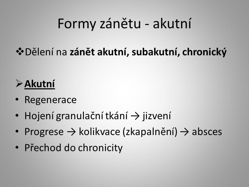 """Formy zánětu - chronický  Chronický je pro něj typický kulatobuněčný (mononukleární) infiltrát (""""chronické zánětlivé buňky), tzn."""