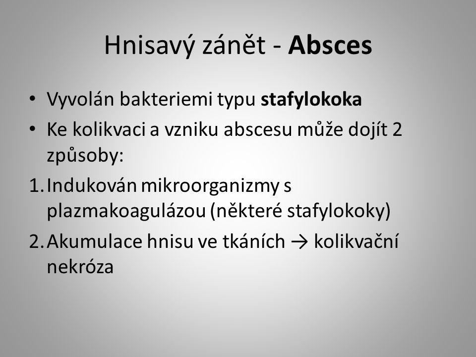 Hnisavý zánět - Absces Vyvolán bakteriemi typu stafylokoka Ke kolikvaci a vzniku abscesu může dojít 2 způsoby: 1.Indukován mikroorganizmy s plazmakoag