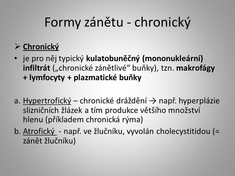 """Formy zánětu - chronický  Chronický je pro něj typický kulatobuněčný (mononukleární) infiltrát (""""chronické zánětlivé"""" buňky), tzn. makrofágy + lymfoc"""