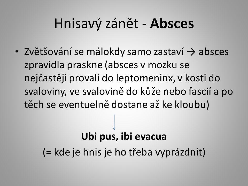 Hnisavý zánět - Absces Zvětšování se málokdy samo zastaví → absces zpravidla praskne (absces v mozku se nejčastěji provalí do leptomeninx, v kosti do