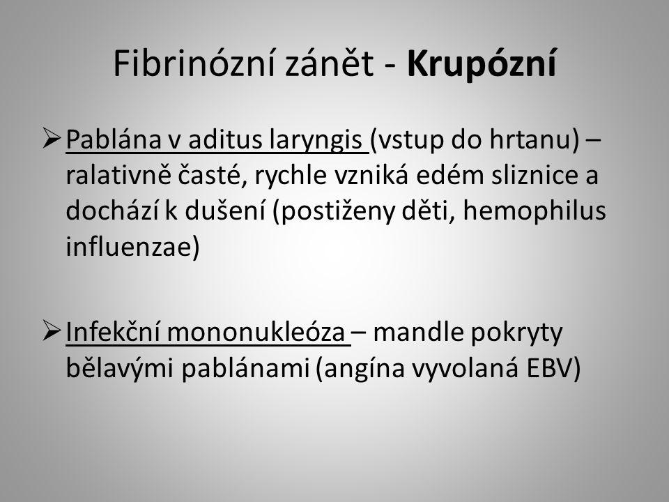 Fibrinózní zánět - Krupózní  Pablána v aditus laryngis (vstup do hrtanu) – ralativně časté, rychle vzniká edém sliznice a dochází k dušení (postiženy