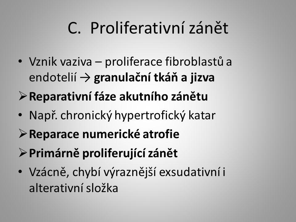 C. Proliferativní zánět Vznik vaziva – proliferace fibroblastů a endotelií → granulační tkáň a jizva  Reparativní fáze akutního zánětu Např. chronick