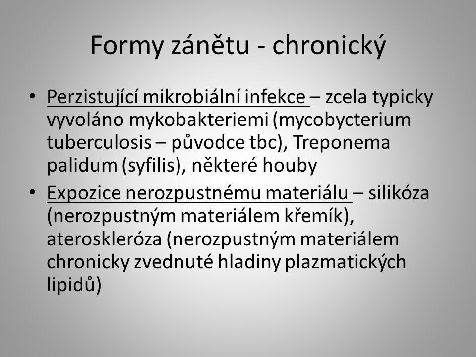 Formy zánětu - chronický Perzistující mikrobiální infekce – zcela typicky vyvoláno mykobakteriemi (mycobycterium tuberculosis – původce tbc), Treponem