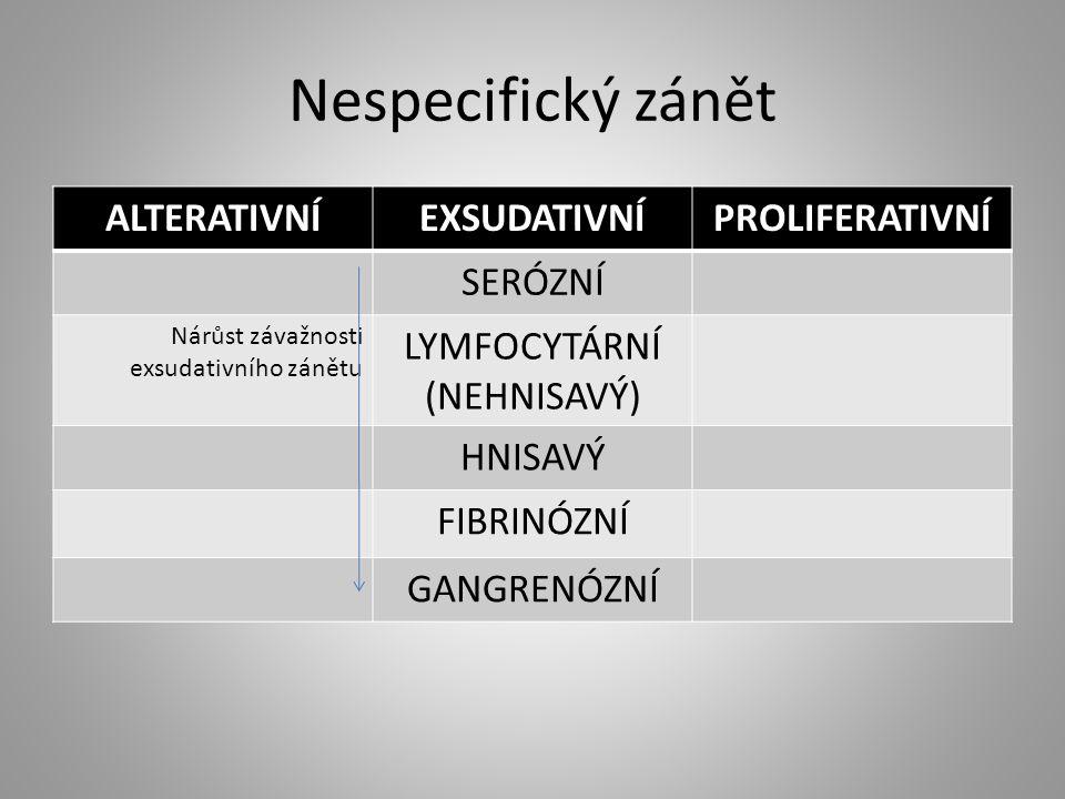 Nespecifický zánět ALTERATIVNÍEXSUDATIVNÍPROLIFERATIVNÍ SERÓZNÍ Nárůst závažnosti exsudativního zánětu LYMFOCYTÁRNÍ (NEHNISAVÝ) HNISAVÝ FIBRINÓZNÍ GAN