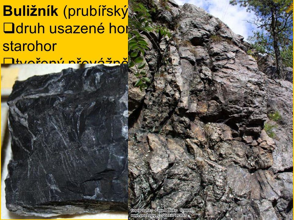 Buližník (prubířský kámen)  druh usazené horniny pocházející ze starohor  tvořený převážně oxidem křemičitým ve formě křemene, případně opálu  čern