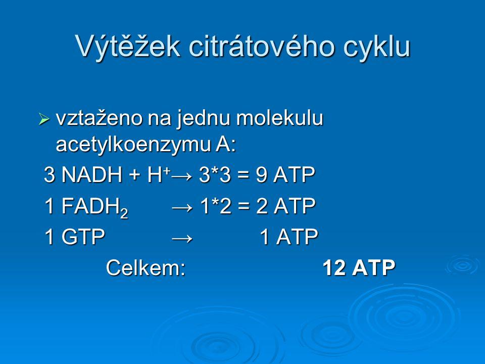  vztaženo na jednu molekulu acetylkoenzymu A: 3 NADH + H + → 3*3 = 9 ATP 3 NADH + H + → 3*3 = 9 ATP 1 FADH 2 → 1*2 = 2 ATP 1 FADH 2 → 1*2 = 2 ATP 1 G