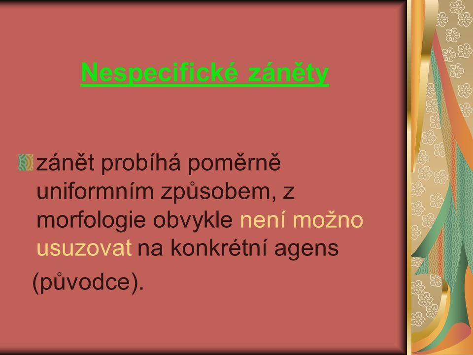 zánět probíhá poměrně uniformním způsobem, z morfologie obvykle není možno usuzovat na konkrétní agens (původce).