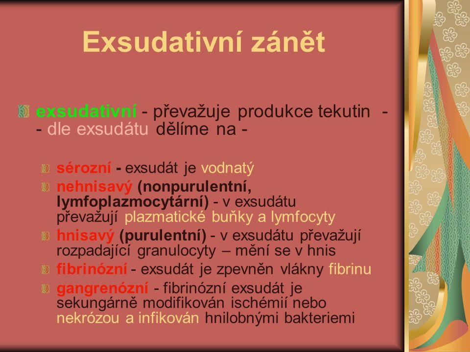 Exsudativní zánět exsudativní - převažuje produkce tekutin - - dle exsudátu dělíme na - sérozní - exsudát je vodnatý nehnisavý (nonpurulentní, lymfopl