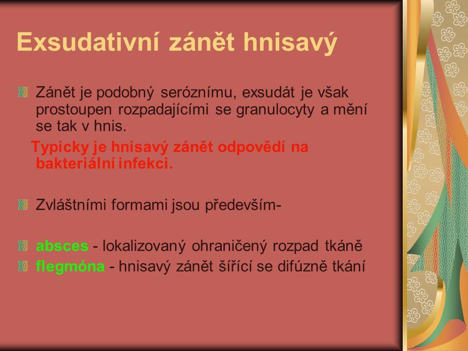 Exsudativní zánět hnisavý Zánět je podobný seróznímu, exsudát je však prostoupen rozpadajícími se granulocyty a mění se tak v hnis. Typicky je hnisavý