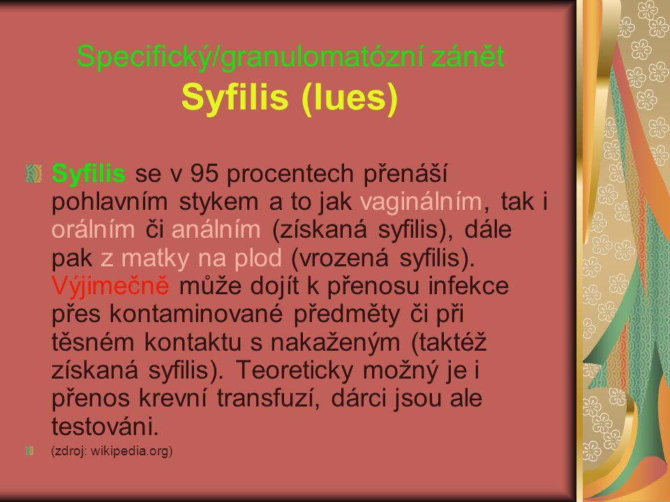 Specifický/granulomatózní zánět Syfilis (lues) Syfilis se v 95 procentech přenáší pohlavním stykem a to jak vaginálním, tak i orálním či análním (získ