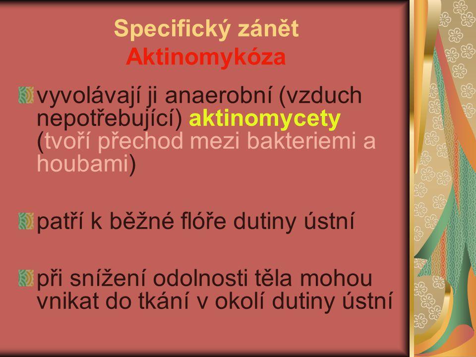 Specifický zánět Aktinomykóza vyvolávají ji anaerobní (vzduch nepotřebující) aktinomycety (tvoří přechod mezi bakteriemi a houbami) patří k běžné flóř