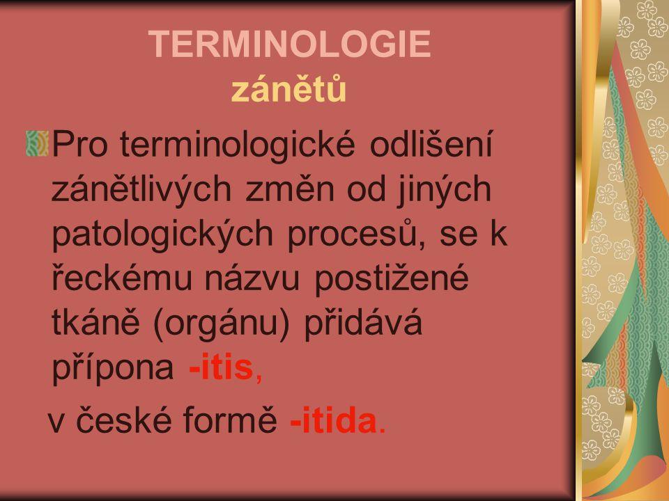TERMINOLOGIE zánětů Pro terminologické odlišení zánětlivých změn od jiných patologických procesů, se k řeckému názvu postižené tkáně (orgánu) přidává