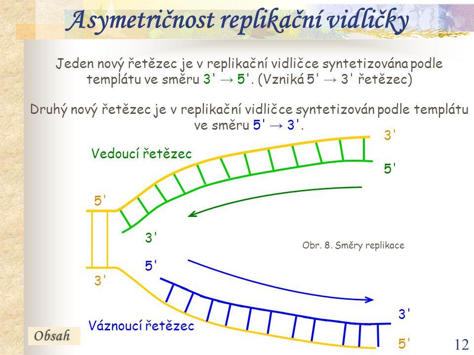 12 Jeden nový řetězec je v replikační vidličce syntetizována podle templátu ve směru 3' → 5'. (Vzniká 5' → 3' řetězec) Druhý nový řetězec je v replika