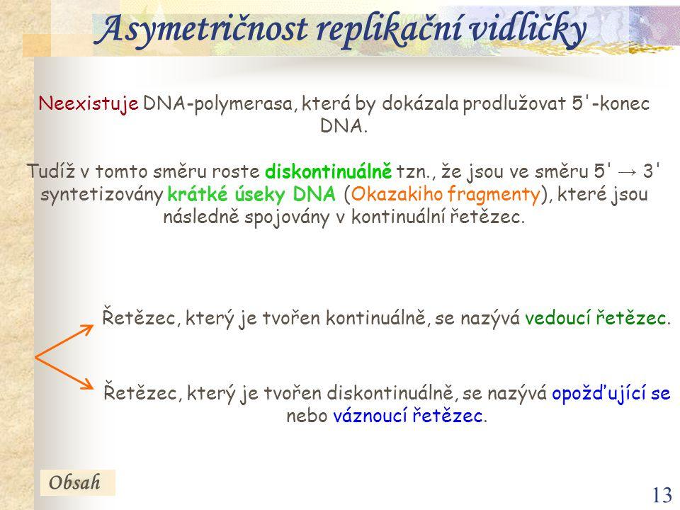 13 Neexistuje DNA-polymerasa, která by dokázala prodlužovat 5'-konec DNA. Tudíž v tomto směru roste diskontinuálně tzn., že jsou ve směru 5' → 3' synt