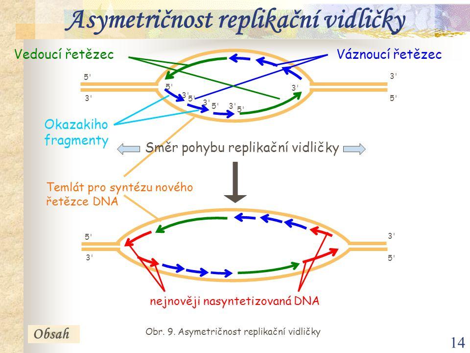 14 Obr. 9. Asymetričnost replikační vidličky Váznoucí řetězec Okazakiho fragmenty Obsah 5'5' 5'5'3'3' 3'3' Vedoucí řetězec Asymetričnost replikační vi
