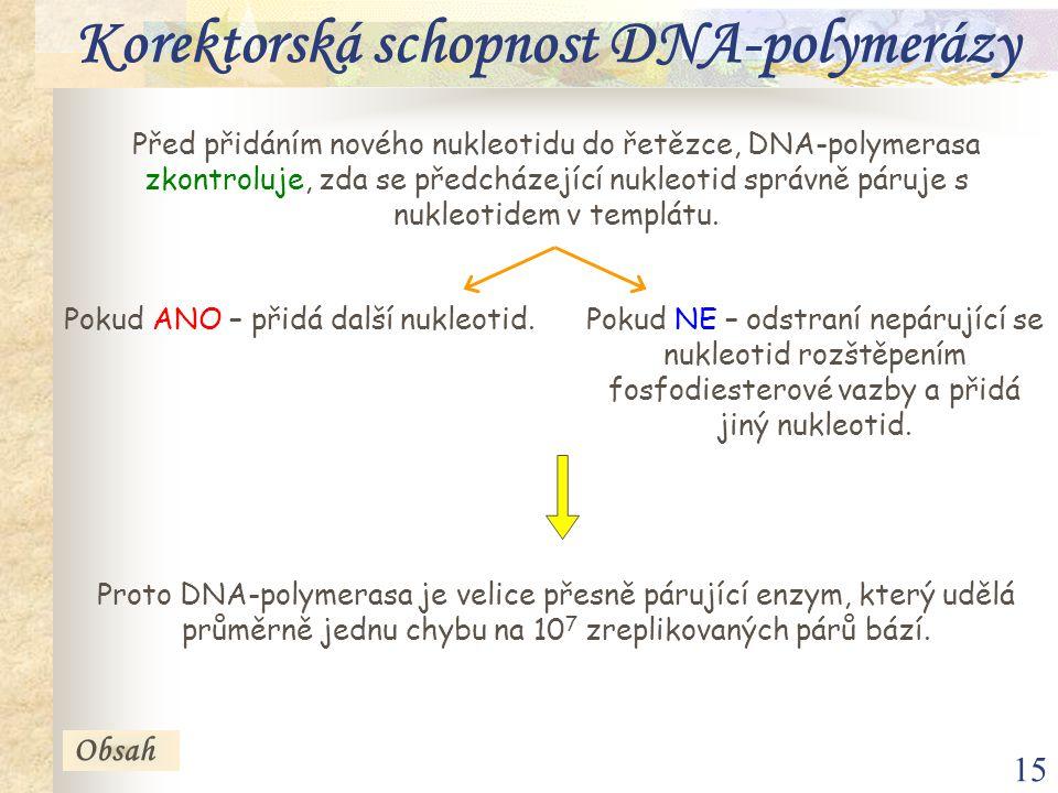 15 Korektorská schopnost DNA-polymerázy Před přidáním nového nukleotidu do řetězce, DNA-polymerasa zkontroluje, zda se předcházející nukleotid správně