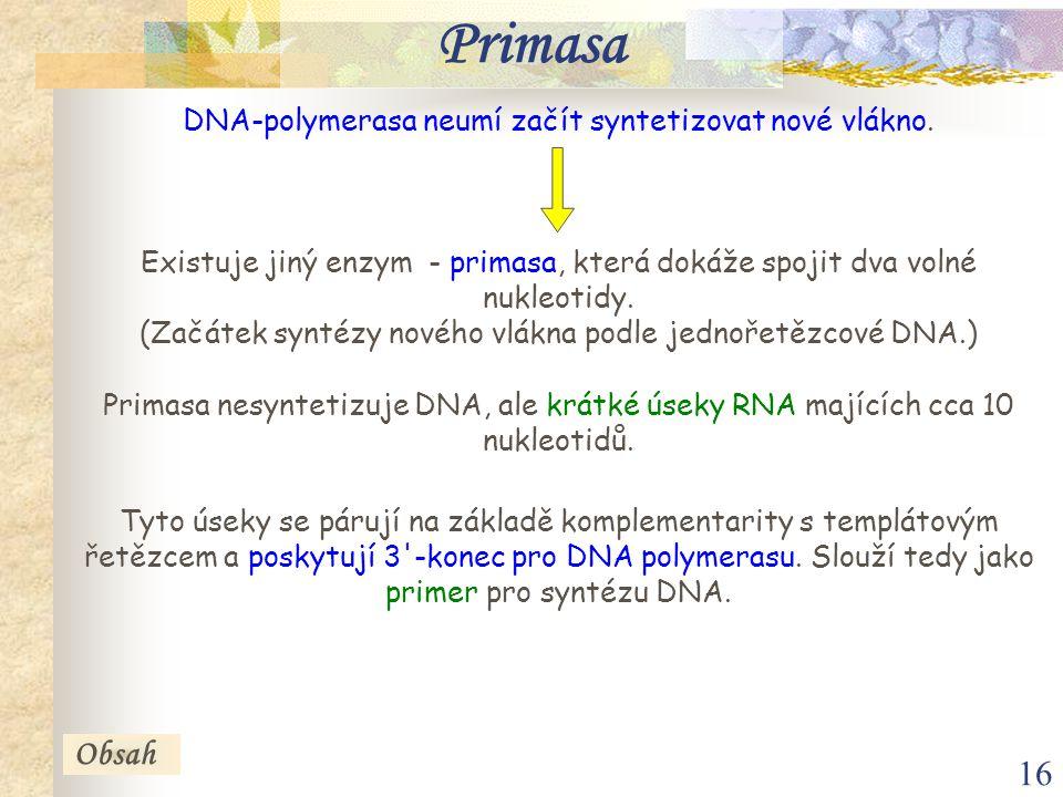 17 Obsah Primasa Váznoucí řetězec 5 3 5 3 Okazakiho fragmenty 1.