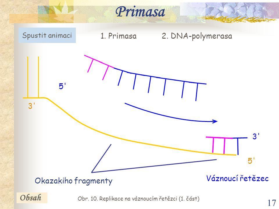 17 Obsah Primasa Váznoucí řetězec 5' 3' 5' 3' Okazakiho fragmenty 1. Primasa2. DNA-polymerasa Spustit animaci Obsah Obr. 10. Replikace na váznoucím ře