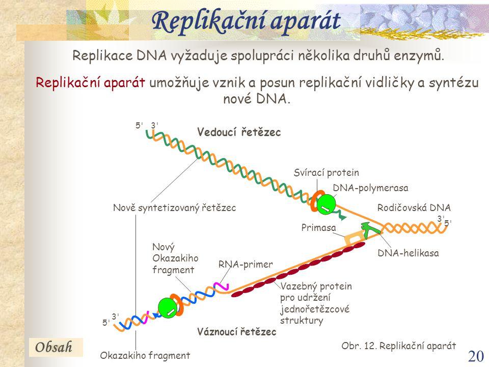 20 Replikační aparát Replikace DNA vyžaduje spolupráci několika druhů enzymů. Replikační aparát umožňuje vznik a posun replikační vidličky a syntézu n
