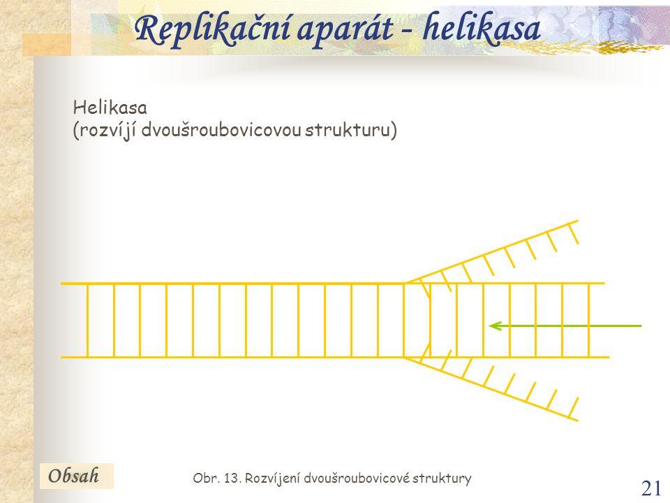 21 Helikasa (rozvíjí dvoušroubovicovou strukturu) Obsah Replikační aparát - helikasa Obr. 13. Rozvíjení dvoušroubovicové struktury