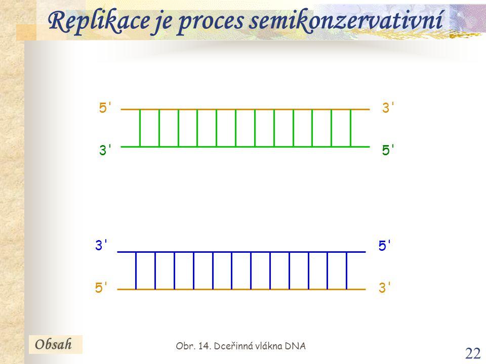 22 5' 3' 5' 3' 5' 3' 5' Obsah Replikace je proces semikonzervativní Obr. 14. Dceřinná vlákna DNA