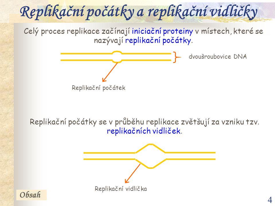 4 Replikační počátky a replikační vidličky Celý proces replikace začínají iniciační proteiny v místech, které se nazývají replikační počátky. Replikač