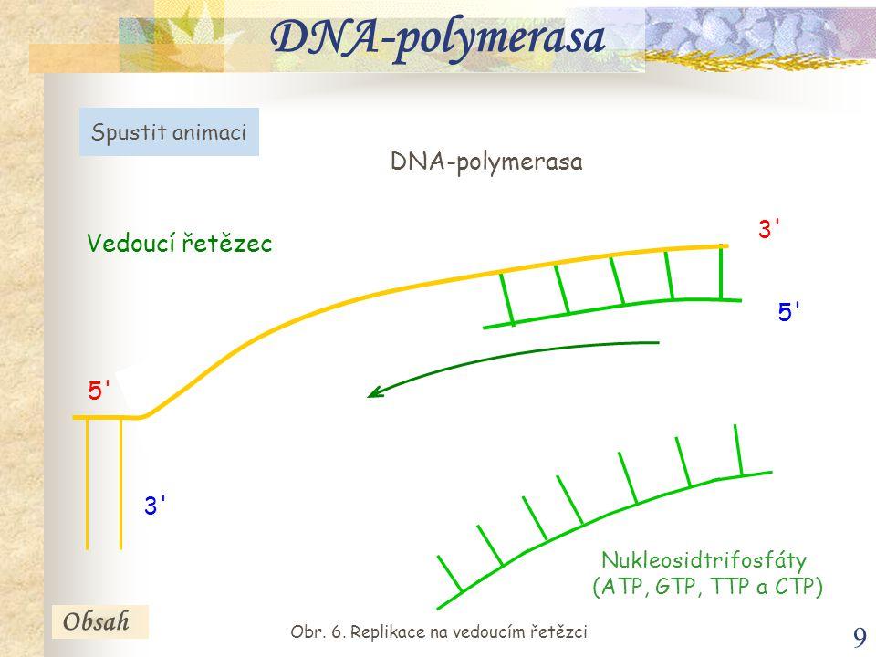 9 Obsah DNA-polymerasa Vedoucí řetězec 5' 3' DNA-polymerasa Spustit animaci 5' Nukleosidtrifosfáty (ATP, GTP, TTP a CTP) Obr. 6. Replikace na vedoucím