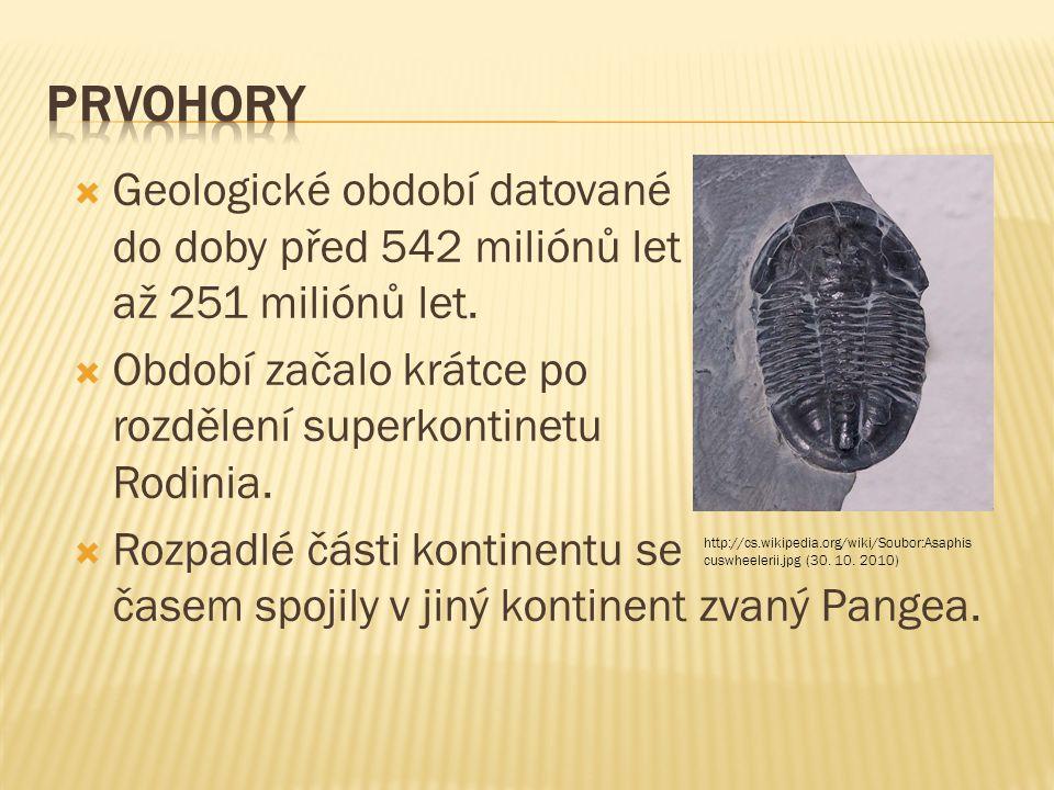  Geologické období datované do doby před 542 miliónů let až 251 miliónů let.