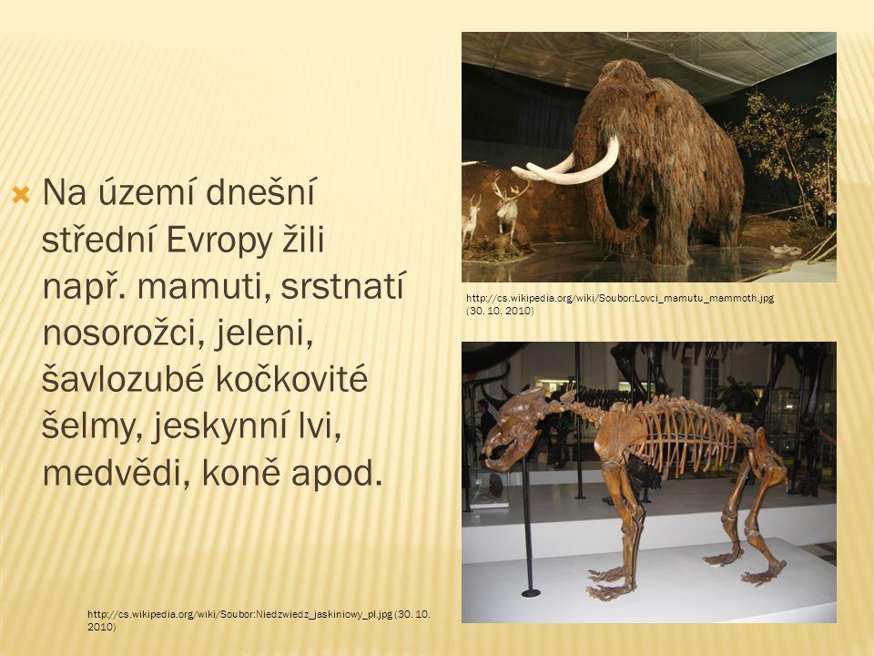  Na území dnešní střední Evropy žili např.