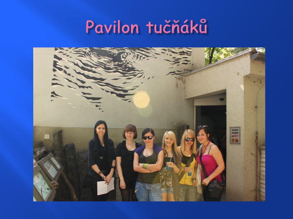  Vznik pavilonu v roce 2004  Vznikl rekonstrukcí pavilonu malých savců  Pavilon je vytápěn zemním plynem  Části: savany, pouště, suché opadavé lesy, deštné pralesy, kamenné jeskyně  Zvířata: téměř 60 druhů, např.