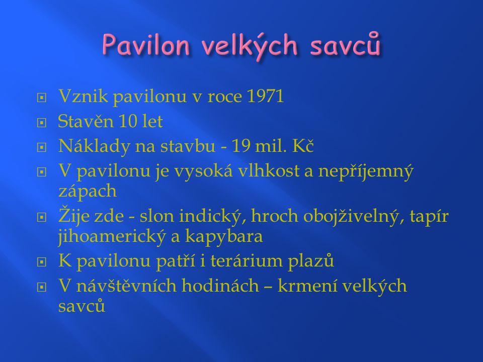  Vznik pavilonu v roce 1971  Stavěn 10 let  Náklady na stavbu - 19 mil.
