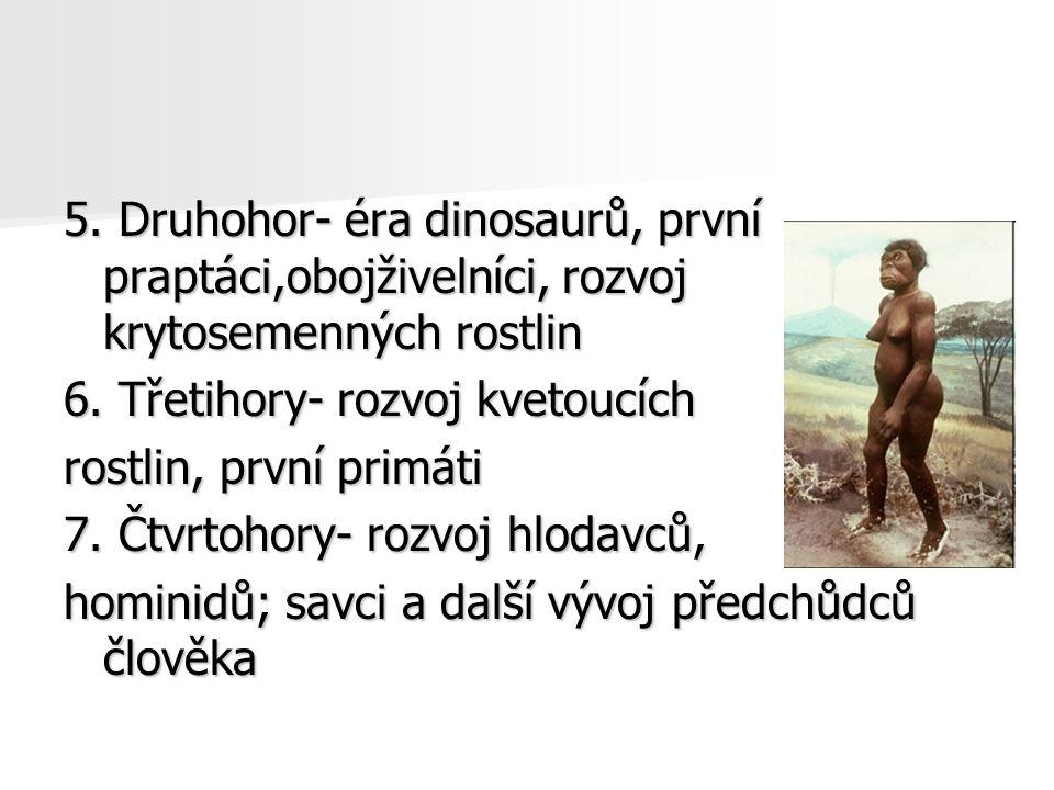 5. Druhohor- éra dinosaurů, první praptáci,obojživelníci, rozvoj krytosemenných rostlin 6. Třetihory- rozvoj kvetoucích rostlin, první primáti 7. Čtvr