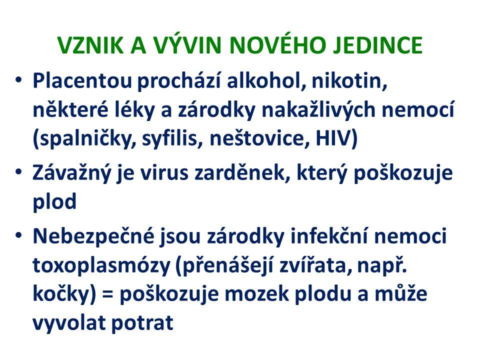 VZNIK A VÝVIN NOVÉHO JEDINCE Placentou prochází alkohol, nikotin, některé léky a zárodky nakažlivých nemocí (spalničky, syfilis, neštovice, HIV) Závaž