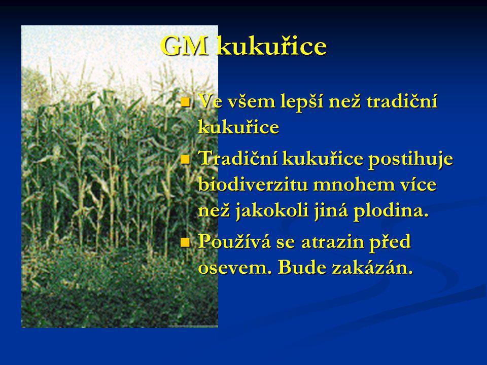 GM kukuřice Ve všem lepší než tradiční kukuřice Ve všem lepší než tradiční kukuřice Tradiční kukuřice postihuje biodiverzitu mnohem více než jakokoli jiná plodina.