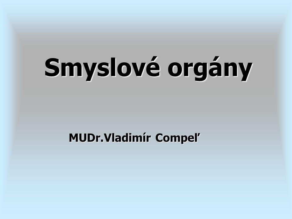 MUDr.Vladimír Compeľ Smyslové orgány