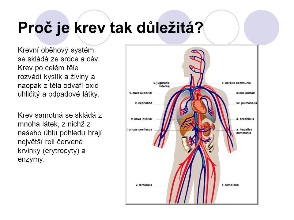 Proč je krev tak důležitá? Krevní oběhový systém se skládá ze srdce a cév. Krev po celém těle rozvádí kyslík a živiny a naopak z těla odváfí oxid uhli