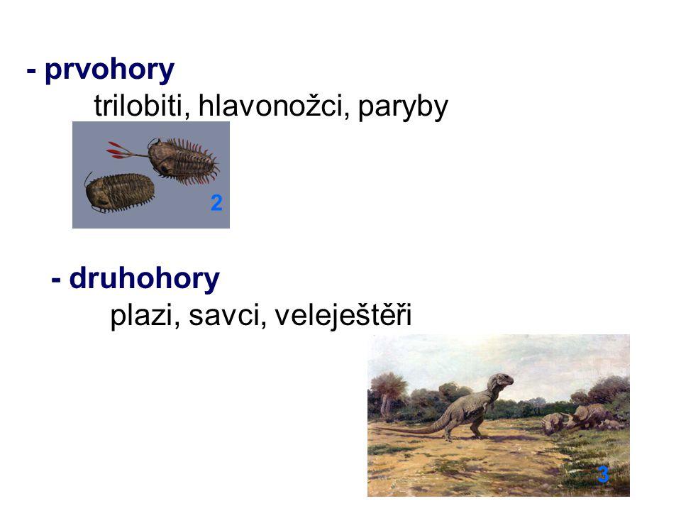 - třetihory sépie, chobotnice, krokodýli, želvy, hadi, savci (nosorožci, šelmy, první primáti) 4 - čtvrtohory hlodavci, mamuti, jeleni, člověk 5