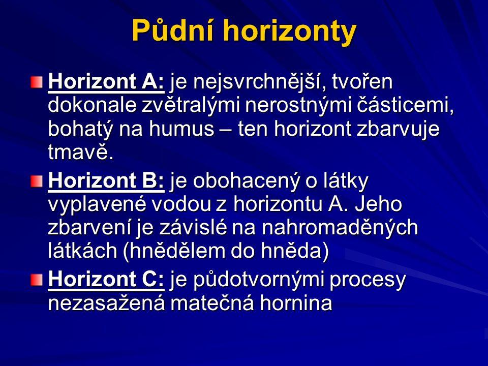 Půdní horizonty Horizont A: je nejsvrchnější, tvořen dokonale zvětralými nerostnými částicemi, bohatý na humus – ten horizont zbarvuje tmavě. Horizont