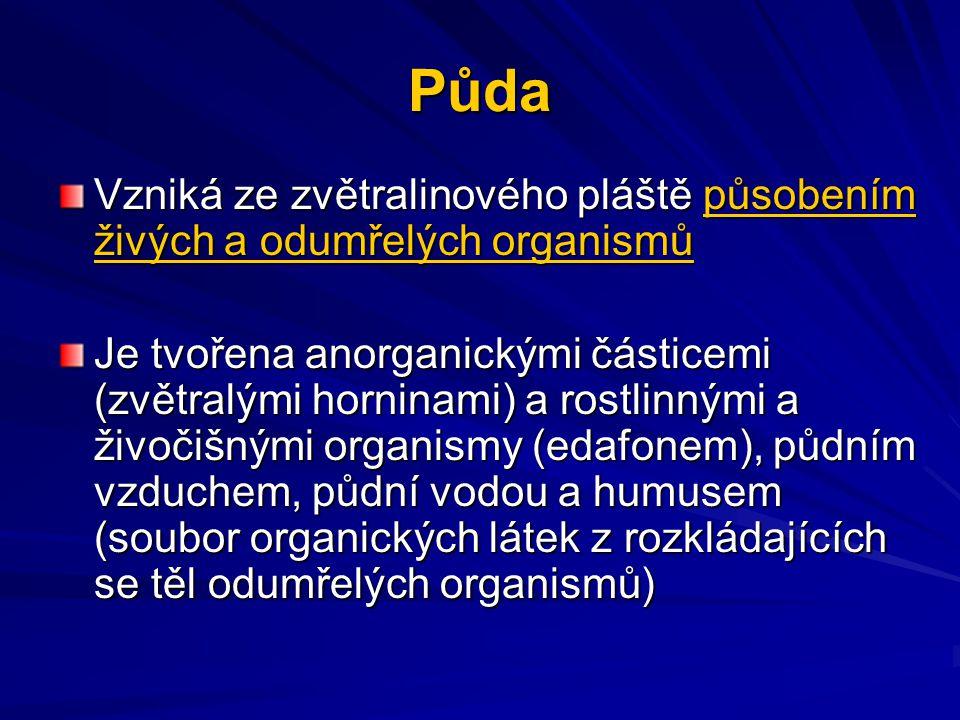 Půda Vzniká ze zvětralinového pláště působením živých a odumřelých organismů Je tvořena anorganickými částicemi (zvětralými horninami) a rostlinnými a živočišnými organismy (edafonem), půdním vzduchem, půdní vodou a humusem (soubor organických látek z rozkládajících se těl odumřelých organismů)